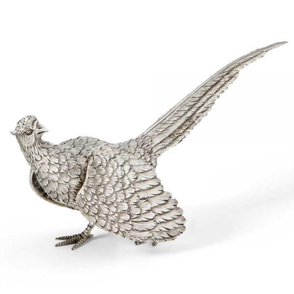 M292 Med Hen Pheasant wings out