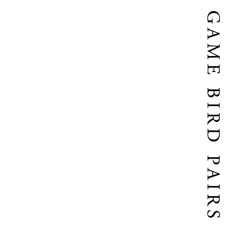 Game Bird Pairs | Francis Howard